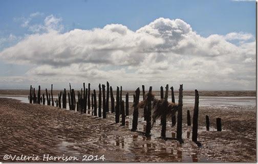 13-Mersehead-beach