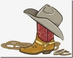 1domar caballo cowboys (3)