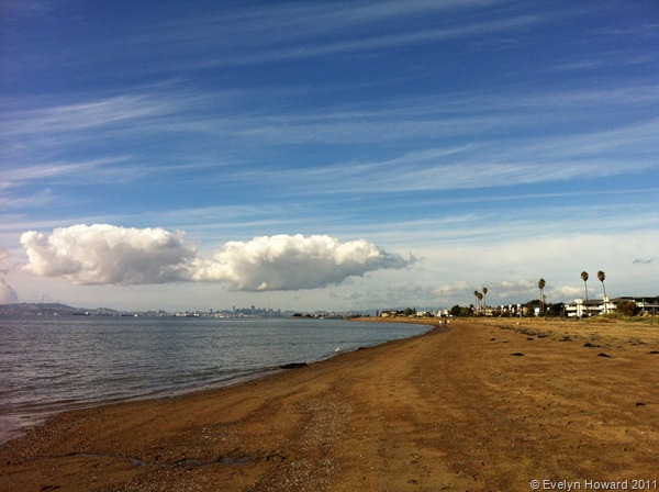 Alameda Beach © Evelyn Howard 2011