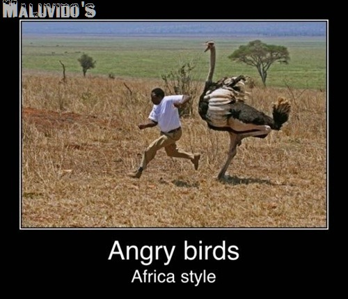 CopyofAfricaANgryBirds