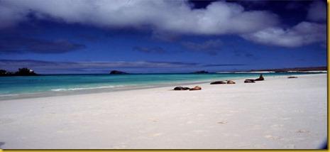 Foto Galapagos Spiaggia 3