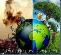 Meio-Ambiente-e-a-Transição-do-Planeta