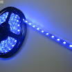 Blue-Color-Flexible-LED-Strip-60-SMD-5050-leds-per-meter-waterproof-IP66--.jpg