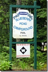 Blueberry Pond CG