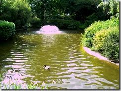 2012.05.31-037 parcs d'Allier