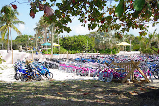 Lots of bikes to choose from!