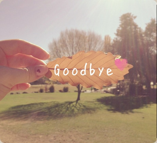 Goodbye Summer | bjvear
