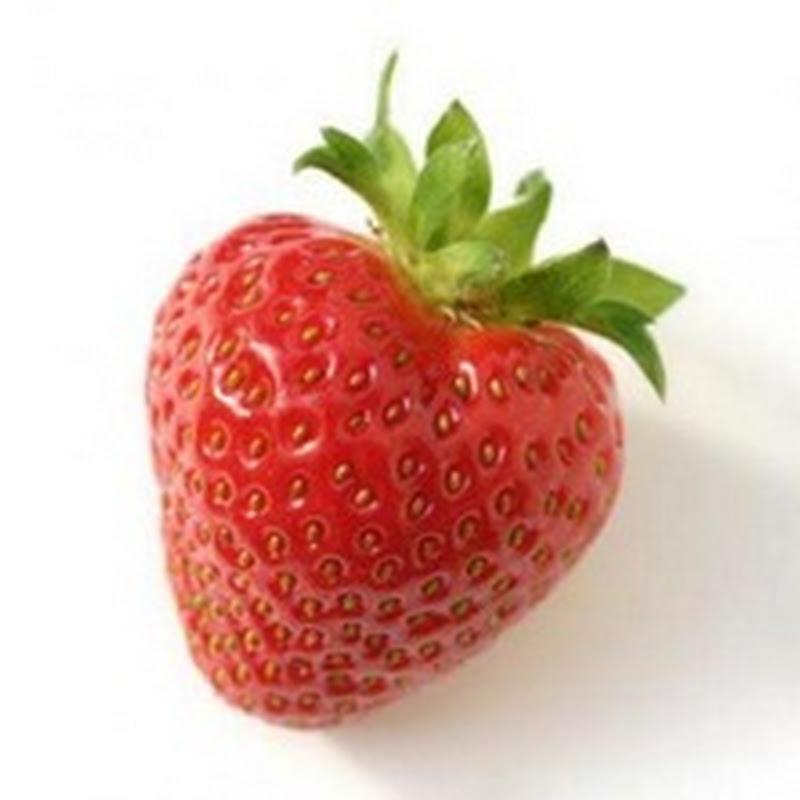 الفراولة تحمى قلبك من الشيخوخة لهذه الاسباب