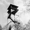 Fire / Observation Towers