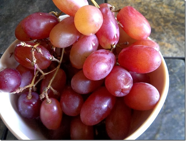 grapes-public-domain-pictures-1 (2250)