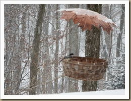 bird feeder basket attracts its first visitor a chickadee but out of focus