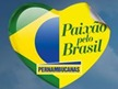 paixao pelo brasil pernambucanas