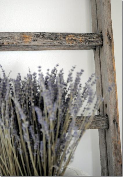 ladder and lavender