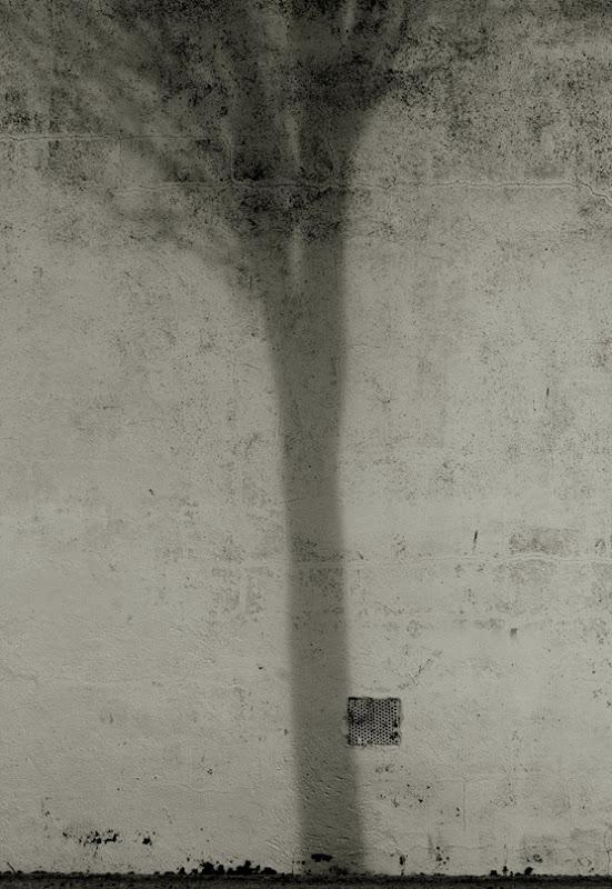 629 la sombra contra la pared