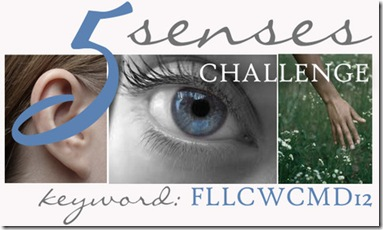 5 Senses Challenge - WCMD