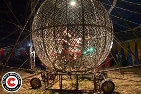 circo (50)