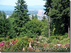 Portland Oregon from Rose Garden