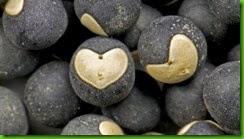 Sementes Coração