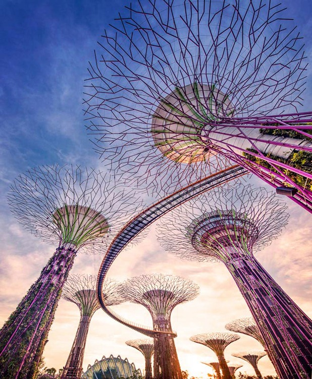 gardens by the bay by grant associates and wilkinson eyre architects 6