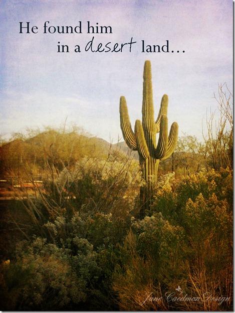 Desert_Land