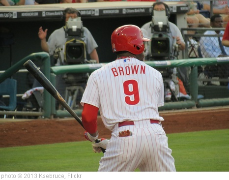 'Philles Dom Brown 1' photo (c) 2013, Ksebruce - license: http://creativecommons.org/licenses/by-nd/2.0/
