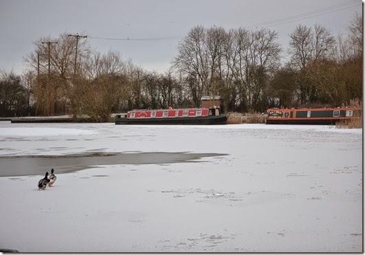 frozen marina 3