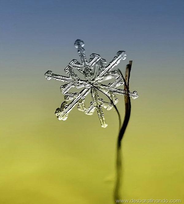 flocos-de-neve-macro-snowflakes-macro-photography-andrew-osokin-desbaratinando (6)