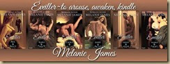Melanie James new book set