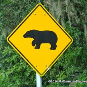 bearcrossingsign.jpg