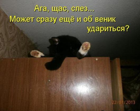 9a93fbaedc633def59262980b3e_prev