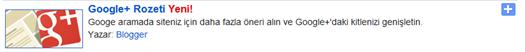 Google+ Rozeti