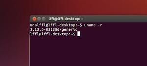 Kernel 3.13.6 in Ubuntu Linux