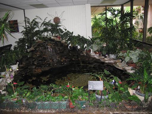 Pin indoor koi pond 7jpg on pinterest for Indoor koi fish pond