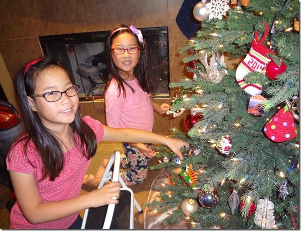 Christmas Tree 040