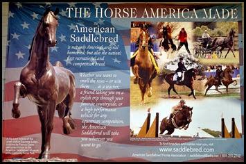 10 - American Saddlebred Museum Poster