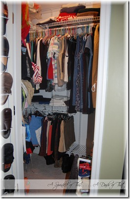 Master Bedroom Closet Before {A Sprinkle of This . . . . A Dash of That}