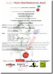 TEAM PROFESSIONAL BIKE_01