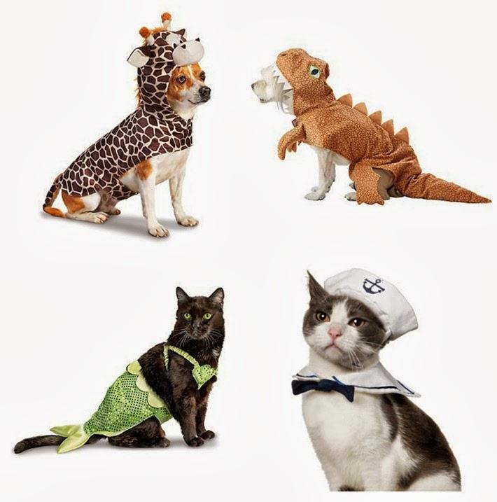 Halloween Pet Costumes 1