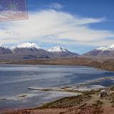 Arica - Parque Nacional Lauca  (19 de 48).jpg