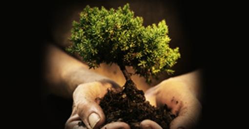 Curso de Práticas Sustentáveis