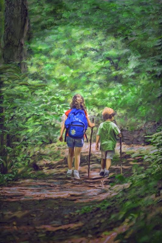 walk in woods terry sita