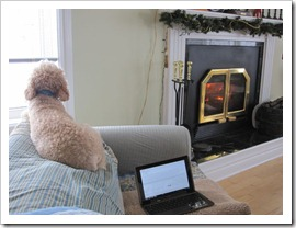 20120113_snow-day-inside_002