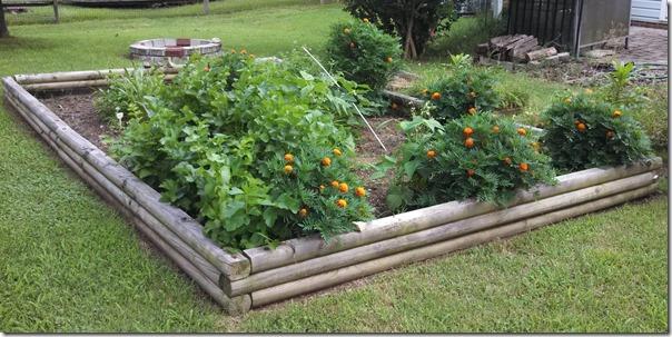 garden 07 (2)