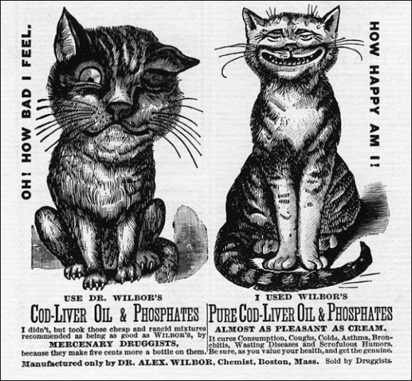 Vintage-Cat-Advertisements-18