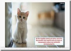 Τι ξέρω για τα ζώα(7)
