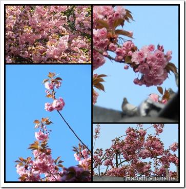 mosaique cerisier