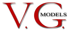 vgmodelmanagement