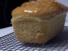 sprouted-wheat-bread 041