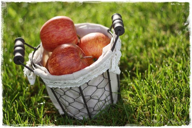 äppelkorg