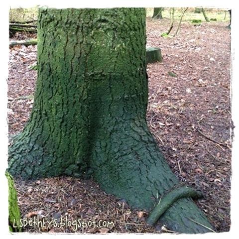Fængslende træ
